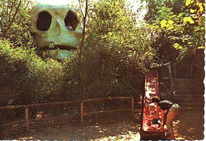 skull.jpg (3770 bytes)